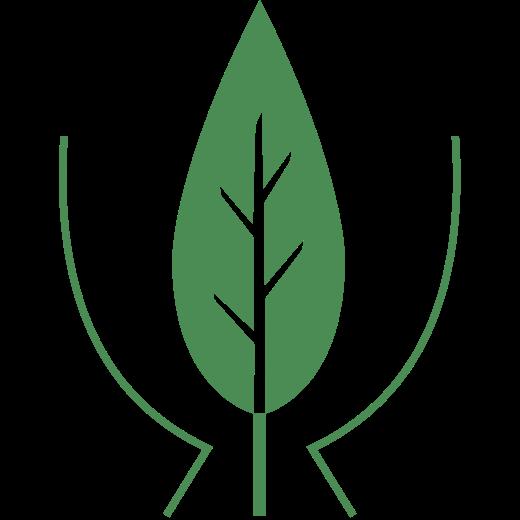 Hoffnungsbaum e.V.